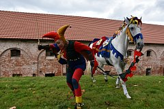 3. ročník oblastní přehlídky koní na festivalu Biskupické kaléšek v Biskupicích u Jevíčka. Divákům se představilo 20 koní.