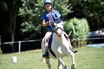 V sobotu se uskuteční v Janově jezdecké závody.