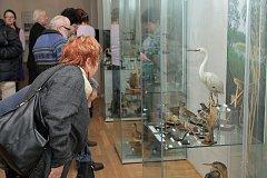 NOVÁ VÝSTAVA je přístupná veřejnosti v litomyšlském muzeu.