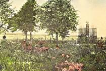 Růžový palouček - dobová pohlednice.