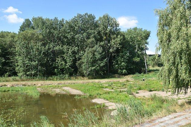 Rybník Širůček v Budislavi.