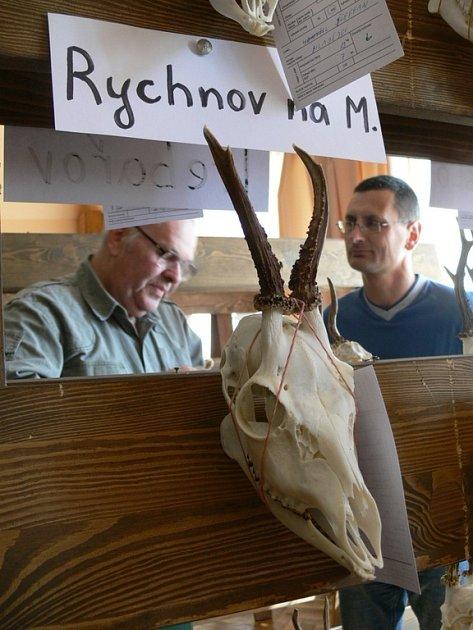 Přehlídka loveckých trofejí v Opatovci u Svitav.