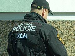 Až strážníci městské policie od sebe dostali rozzruřený manželský pár. Ilustrační foto: archív Deníku