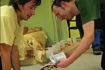 V poličské charitě ve čtvrtek sčítali výtěžek z tříkrálové sbírky.