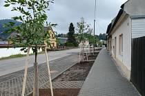 Olomoucká ulice změnila vzhled, přibyly i stromy