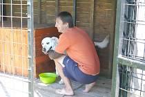 PSÍ HOTEL je jednou z možností, kam můžete umístit svého psího mazlíčka v době dovolené nebo nemoci. V psím hotelu v Kukli má každý svůj kotec a k dispozici velkou zahradu.