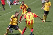 Trnávka Cup 2013