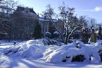 Zima v Poličce.