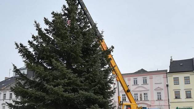 Vánoční strom pro Moravskou Třebovou