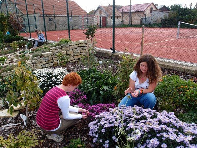 Školní zahrada jakou patrně nikde nemají, najdou lidé v Morašicích. Jsou v ní desítky druhů rostlin opatřených popiskou, ale také altán.