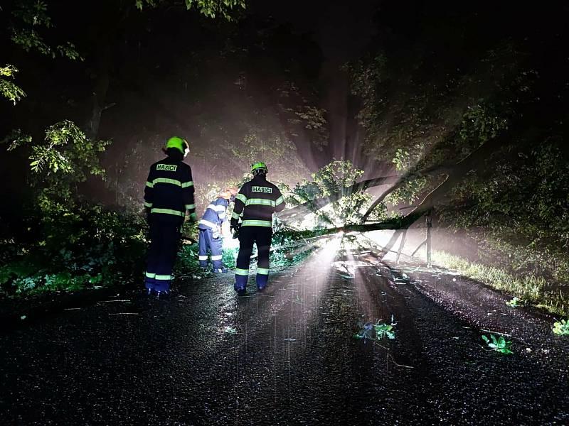 Práce profesionálních hasičů je náročná fyzicky i psychicky. Zasahují u požárů, nehod, zachraňují lidi i zvířata a pomáhají při živelných katastrofách.