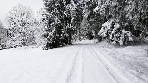 Sníh láká do přírody, na běžky i se sáňkami na kopec.