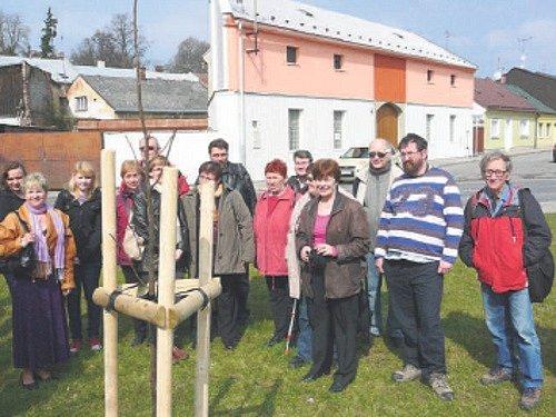 Členové místního klubu vysadili strom ve Svitavách.