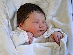 ADÉLKA KOLOMAZNÍKOVÁ. Narodila se 13. dubna Nikol Bláhové a Michalovi Kolomazníkovi z Opatova. Měřila 52 centimetrů a vážila 4 kilogramy.
