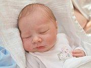 KRISTÝNA KOMANOVÁ. Ester a Zdeňkovi z Brněnce se 3. listopadu narodila dcera. Měřila 48 centimetrů a vážila 3,15 kilogramu.