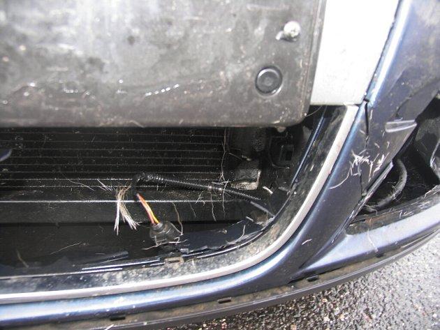 Srážka srny a osobního automobilu.