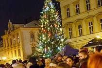 Vánoční strom zkrášlil dřevěný betlém.