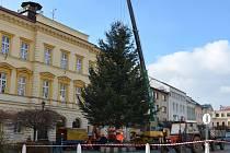 CENTRUM SVITAV má od pondělí vánoční strom.