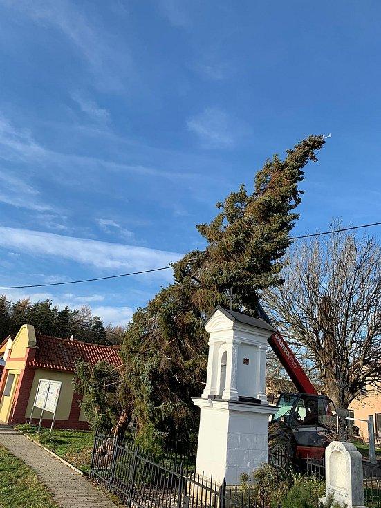 Hasiči pomáhali při zajištění poničených střech a zabezpečovali i vánoční stromy.