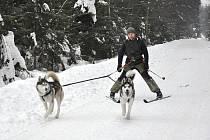Zdeněk Brůna vyráží na lyže se psy.