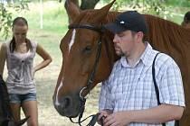 koně - ilustrační foto