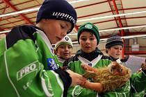Vánoční hokejový turnaj čtvrtých tříd