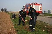 Dobrovolní hasiči z Katusic letos vysadili lipovou alej podél cesty k čistírně odpadních vod.