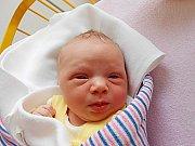 Viktorie Šurovská se narodila 22. ledna, vážila 2,8 kg a měřila 48 cm. S maminkou Barborou a tatínkem Zdeňkem bude bydlet v Nepřevázce.
