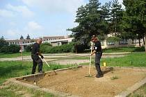 Strážníci městské policie sbírali injekční stříkačky z dětských hřišť a pískovišť