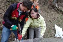 Instalace bariér pro migrující živočichy u Dolní Krupé.
