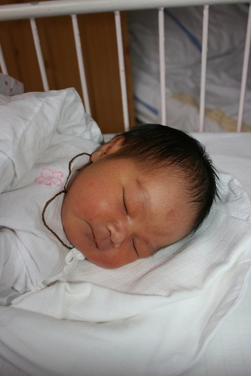 Há a Quy z Dolního Bousova mají od 2. února dcerku Uyen Do Pham Ha. Ta po porodu vážila 3,5 kg a měřila 52 cm.