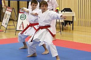 Mistrovství České republiky v karate asociace FSKA