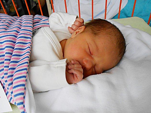 Kamila Hanzlíková se narodila 6. února, vážila 2,75 kg a měřila 46 cm. S maminkou Michaelou a tatínkem Alešem bude bydlet v Jabkenicích, kde už se na ni těší sestřička Karolína.