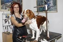 Jitka Velemanová provozuje řadu let psí salon