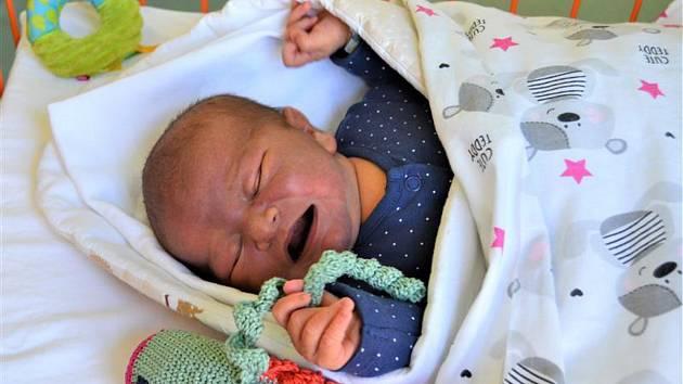 V Klaudiánově nemocnici miminka dostávají speciální chobotničky.