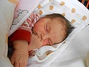 Alžběta Potorová se narodila 20. listopadu mamince Michaele z Mladé Boleslavi. Vážila 3,25 kg a měřila 48 cm. Doma se na ni už těší bráškové Martínek a Michálek.