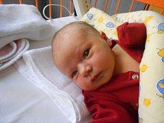 ADÉLA Pech se narodila 16. října. Vážila 3,58 kilogramů a měřila 50 centimetrů. S maminkou Polinou a tatínkem Pavlem bude bydlet v Mladé Boleslavi.