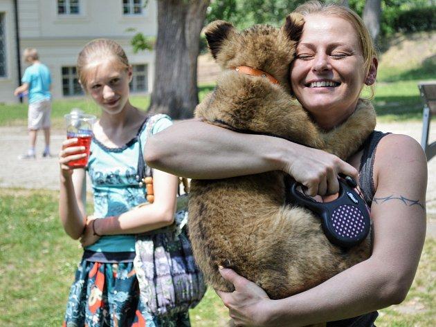 Hvězdou dětského dne, který na Černínském náměstí v Kosmonosech uspořádal zdejší Klub turistů, byla malá lví slečna.