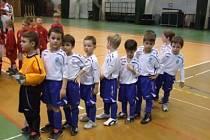 Minižáci FK Mladá Boleslav