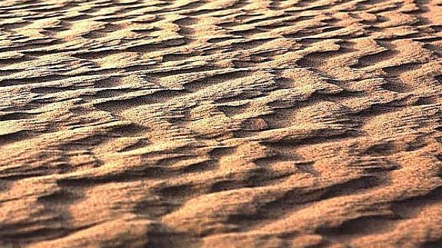 Večerní Sahara