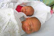 LINDA a NELA Michalovy se narodily 2. ledna mamince Michaele a tatínkovi Jaroslavovi z Luštěnic.