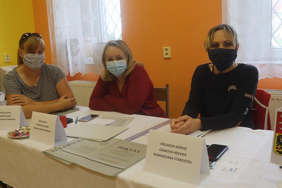 Krajské volby 2020 na Mladoboleslavsku.