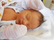 Anna Grebeňová přišla na svět 24. února s mírami 3,48 kg a 50 cm. Maminka Bára a tatínek Fanda si ji odvezou domů do Semčic.
