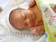 Ellen Baudisová se narodila 4. září, vážila 3,33 kg a měřila 47 cm. S maminkou Jarmilou a tatínkem Romanem bude bydlet v Mladé Boleslavi.