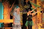 Malí divadelníci z Dolních Stakor hráli O vodnickém štěstí.
