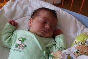 PETR SIXTA se narodil 29.7., vážil 3,91 kg a měřil 52 cm. Společně s maminkou Lucií, tatínkem Pavlem a bráškou Pavlíkem bude bydlet v Mladé Boleslavi.