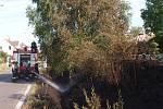 Požár, vzniklý pravděpodobně jiskrami odlétnutými od brzdy vlaku, zachvátil úsek trati mezi Bakovem nad Jizerou a Bělou pod Bezdězem.