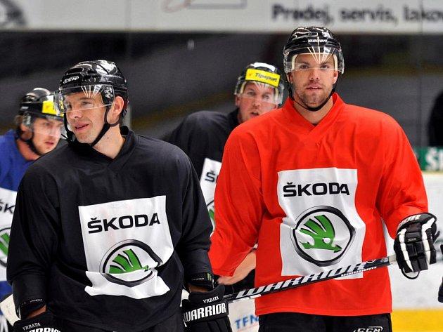 Hokejisté Mladé Boleslavi na ledě