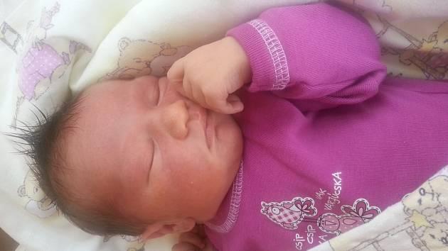 ANETKA Bartoníčková se narodila 17. června, vážila 3,44 kilogramů a měřila rovných 50 centimetrů. S maminkou Vlaďkou, tatínkem Radkem a brášky Ráďou a Ríšou bydlí v Choťovicích u Poděbrad.