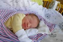 Baruška Poláková, Bechov. Narodila se 18. srpna, vážila 3,11 kg a měřila 47 cm. Maminka Lucie, tatínek Roman a sestřička Verunka.